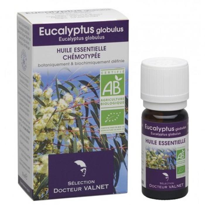 Eucalyptus globulus ēteriskā eļļa BIO 10ml